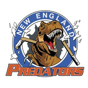my hockey team logo