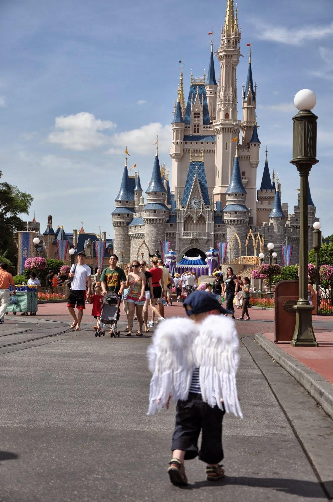7 Day Hopper Pass Disney World