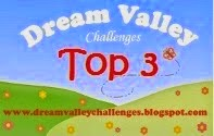 Dream Valley challenge 98 du 2 Février 2015
