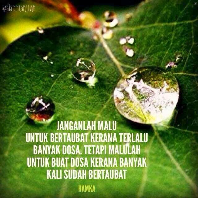 Quote Of The Day Taubat Malu