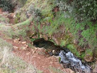 Campechos, Montiel, Campo de Montiel, Ciudad Real, Castilla la Mancha, Spain