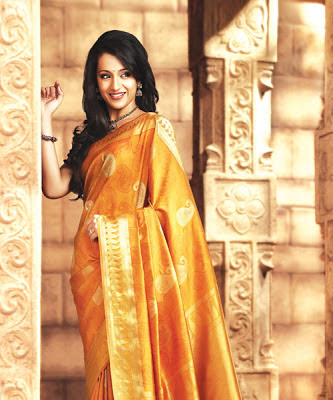Trisha Hot Photo Gallery, wallpapers free,photo galleries,gallery of pics,photography gallery,Free Photos Download
