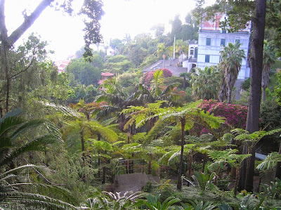 Jardín Tropical Monte Palace, Jardim Monte Palace, Funchal, Madeira, Portugal, La vuelta al mundo de Asun y Ricardo, round the world, mundoporlibre.com