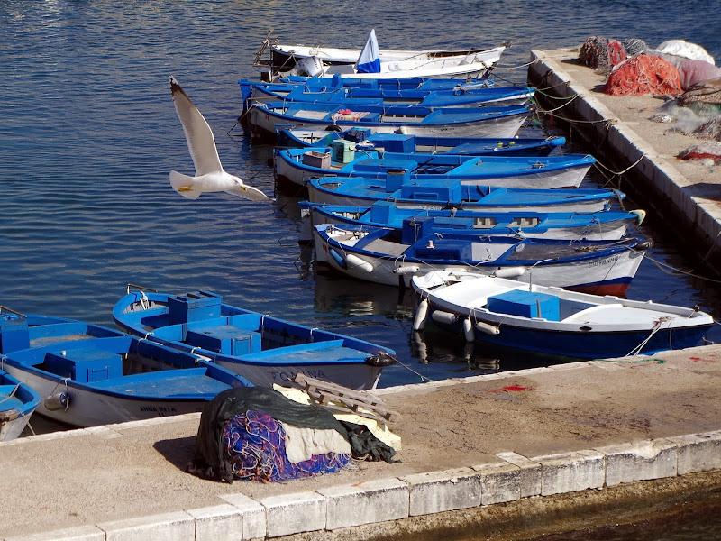 Am Hafen von Gallipoli (Apulien)
