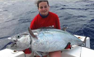International fishing news igfa hot catches news april 2013 for Does tuna fish have scales