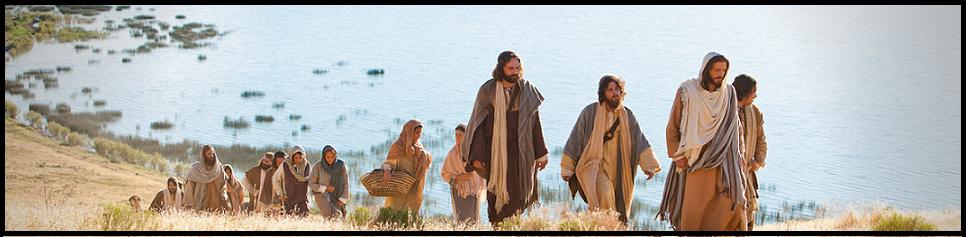 Missionari della Via