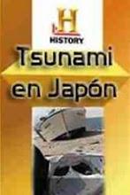 Tsunami en Japón (2012) [Latino]