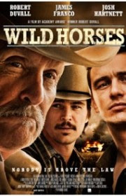 Wild Horses (Caballos salvajes) (2015)