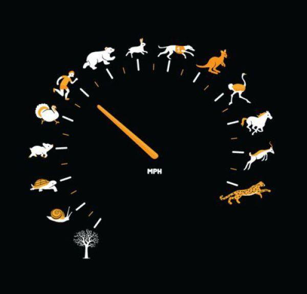 Relógio estranho