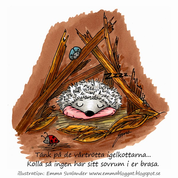 igelkotte som sover i lövhög illustration