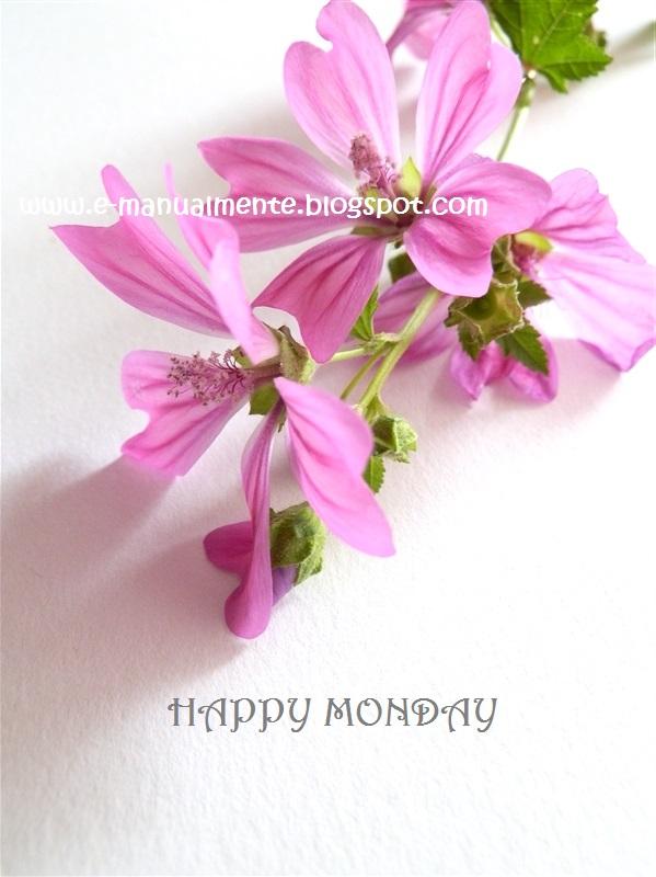 fiori di campo lilla