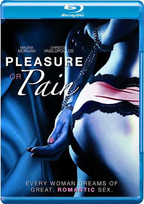 18+ Pleasure or Pain 2013 BluRay 480p Free Download