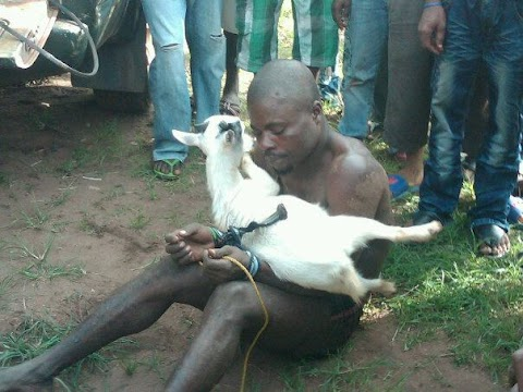 Pics:Man Gets Jungle Justice For Stealing Goat During Sallah Festivities