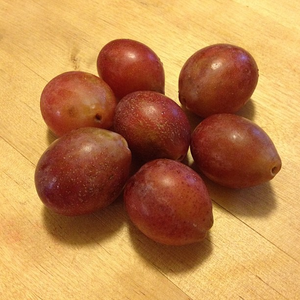The Frugalista Mom's Allergy Friendly Home : Sugar Plum Fruit?