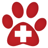 Visita veterinario