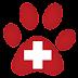 Cuidados basicos de un cachorro - Primera visita al veterinario