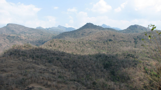 Chinnar Wildlife Sanctuary