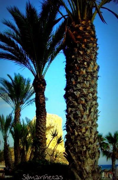 El peñón de Ifach y palmeras.