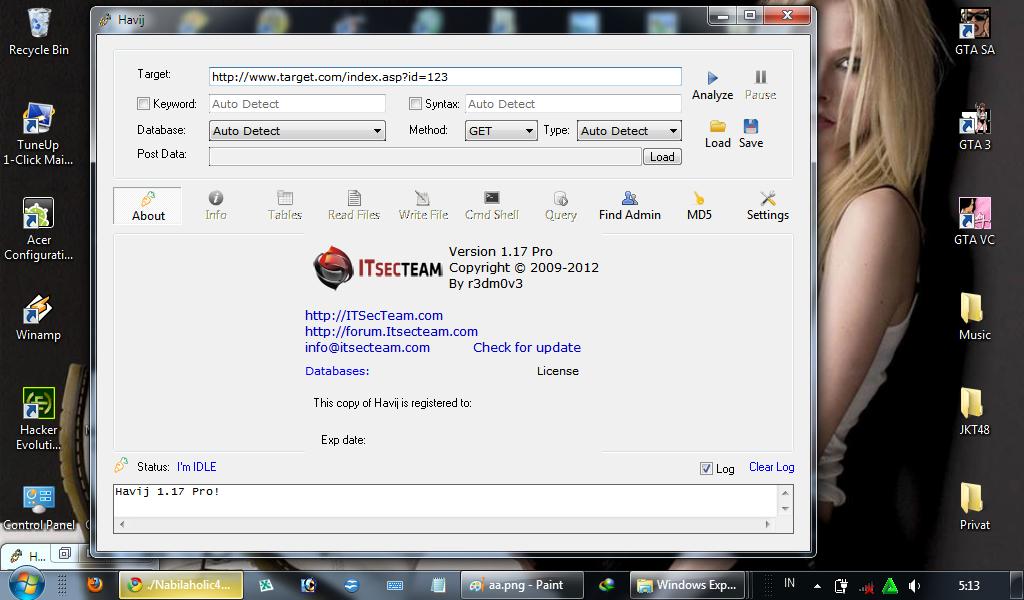 havij 1.17 pro cracked portable download
