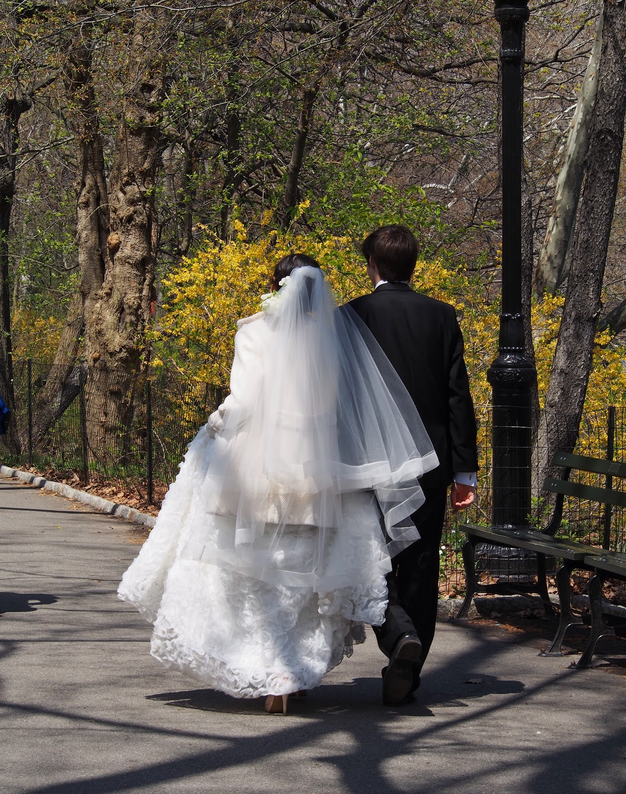 Just Married #NYC #frombehind #justmarried #centralpark #wedding 2014