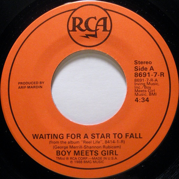 waiting for a star to fall by boy meets girl zebra