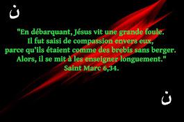 Évangile de Jésus-Christ selon saint Marc 6,30-34.