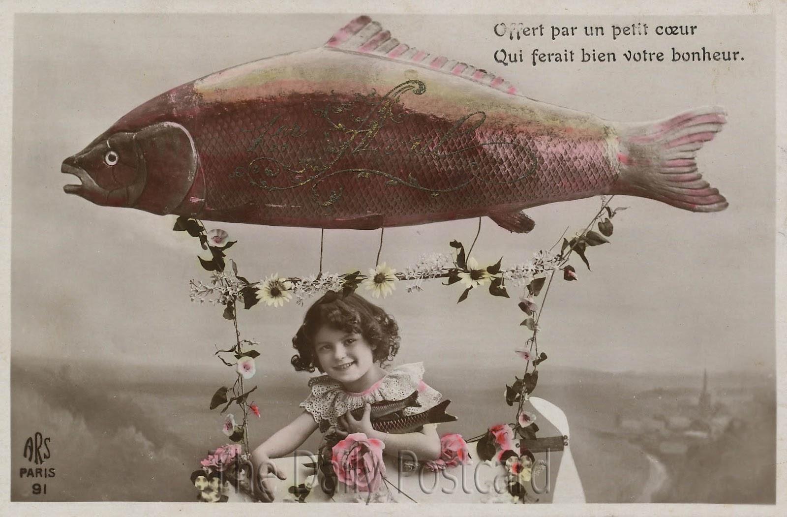 The Daily Postcard De Qui Ce Joli Poisson