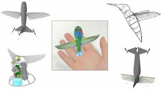 darpa colibri