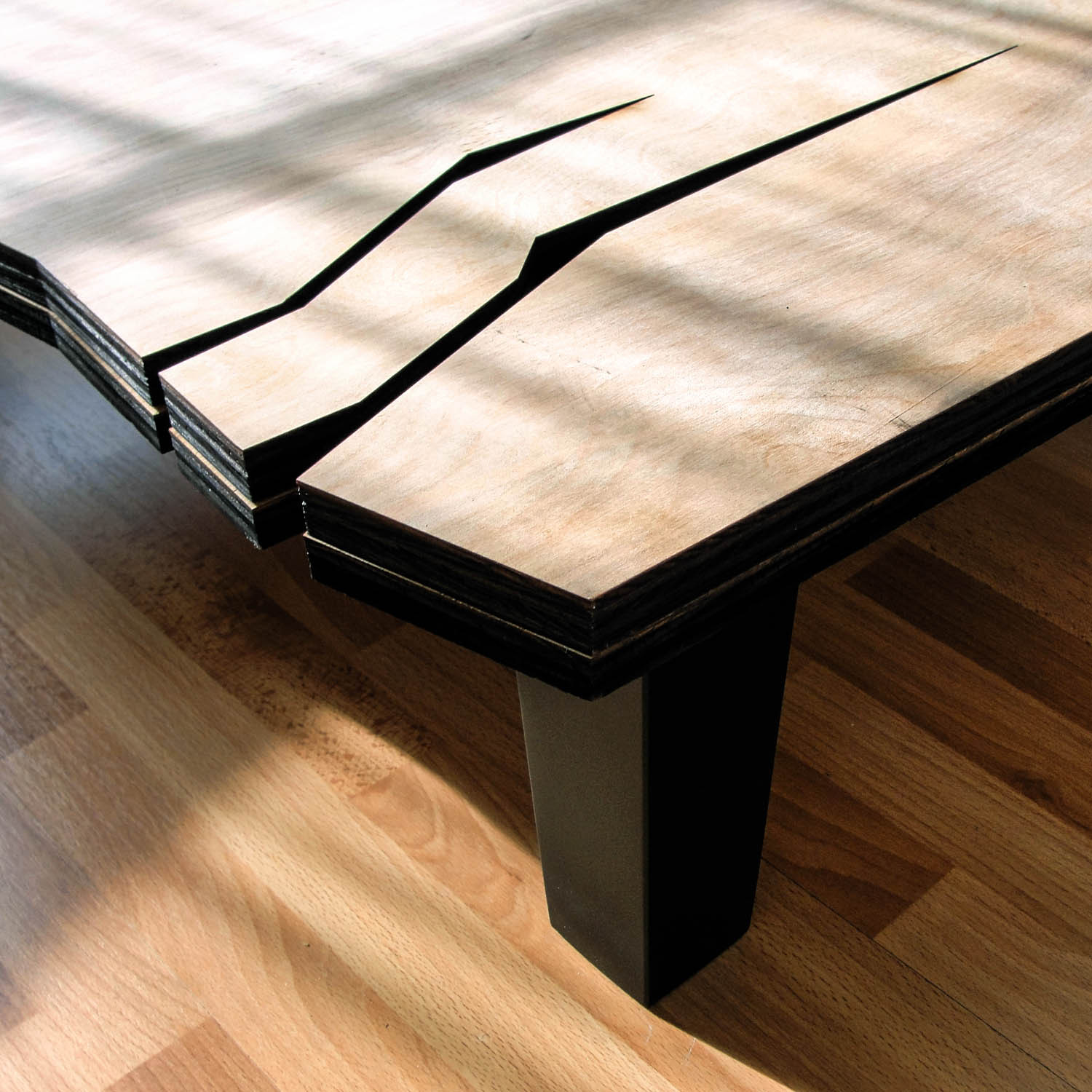 AD Natural Coffee Table by Farzan Nemat