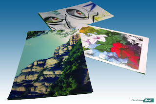 collage-láminas-originales-Carolum-Art-Montserrat-Eye Graff-Petunias
