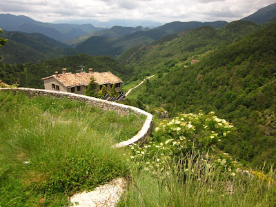 The Pyrenees from Castellar de N'Hug