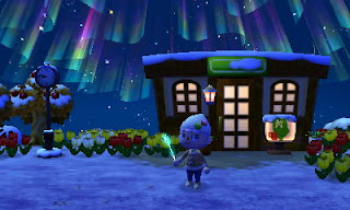 animal crossing the roost northern lights