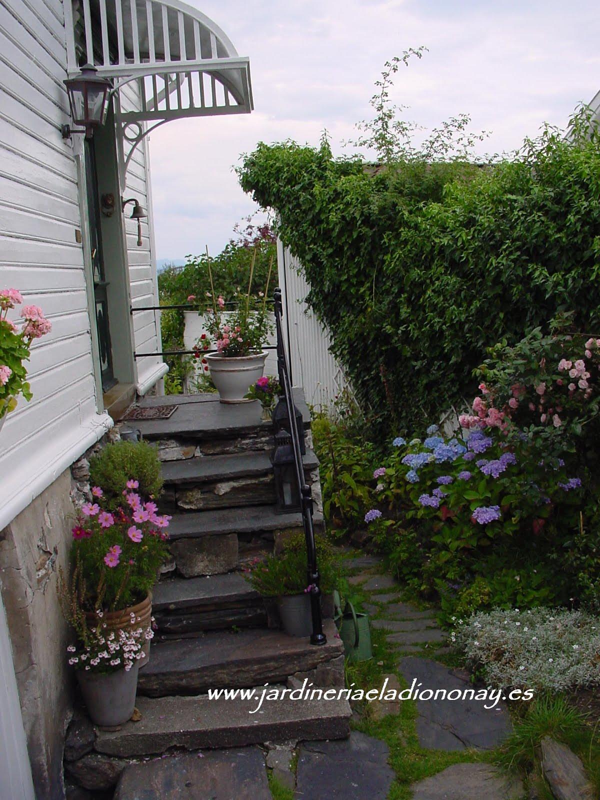 Jardineria eladio nonay abril 2016 - Jardineras en escalera ...