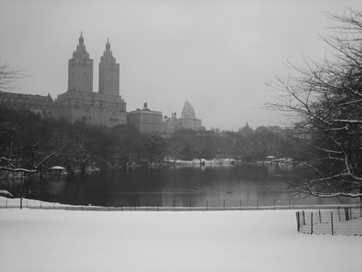 Nueva York Central Park nevado