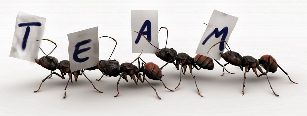 Ants Teamwork Animation | www.pixshark.com - Images ...
