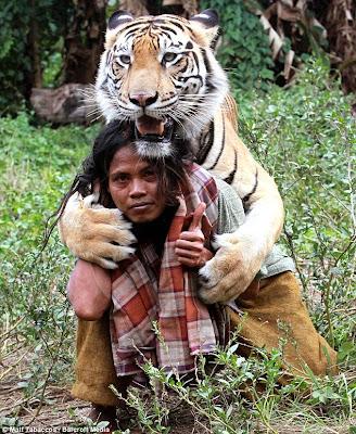 abdullah sholeh dengan macan