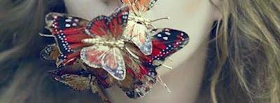 Couverture journal facebook j'aime les papillons