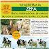 Târgul de zootehnie al României la Aerodromul Floreni  ~  26 - 29 Iunie 2015