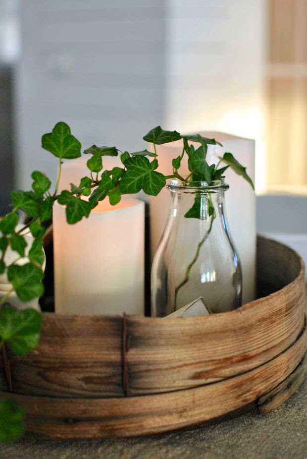 murgröna i vas enjoycandles såll