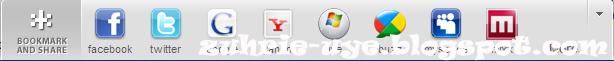 share button,widget,digg,sharing