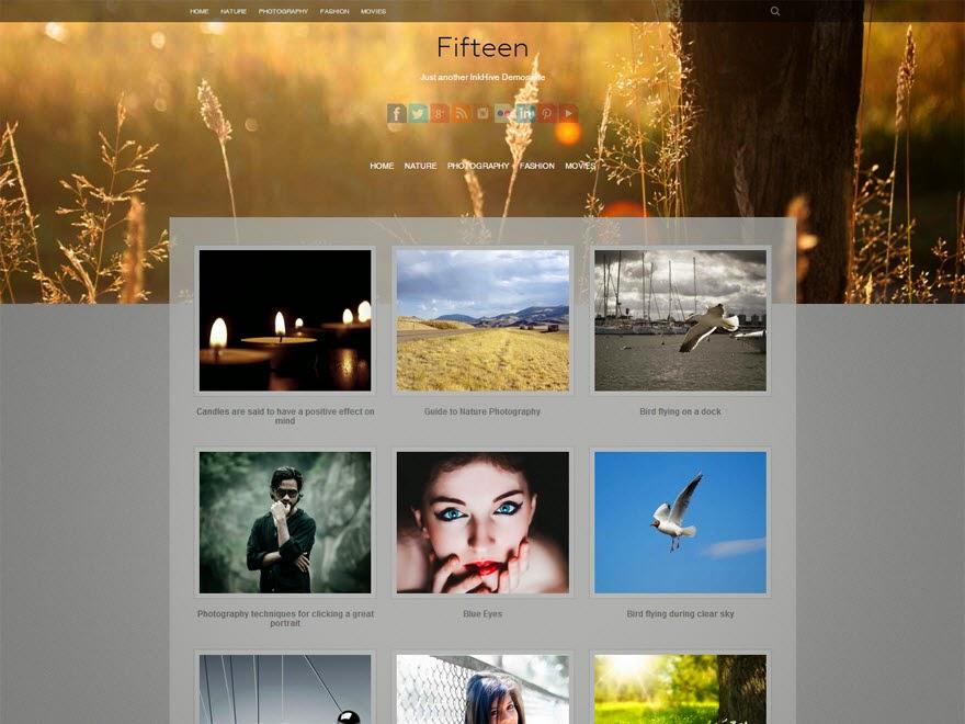 Fifteen Free Portfolio WordPress theme
