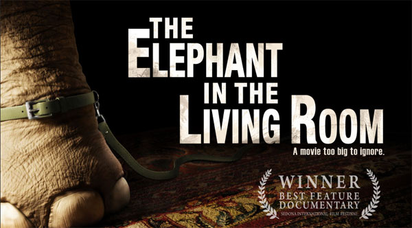Dianapantz 10 documentaries that will change the world queue up your netflix for The lion in the living room netflix