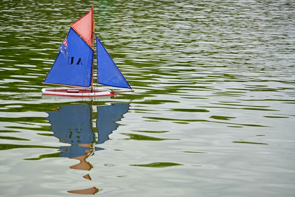 Boat in a pond