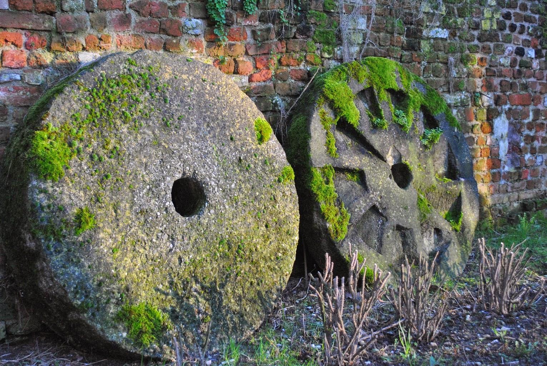 Limoscena visita all 39 abbazia di chiaravalle for Vecchie planimetrie della fattoria