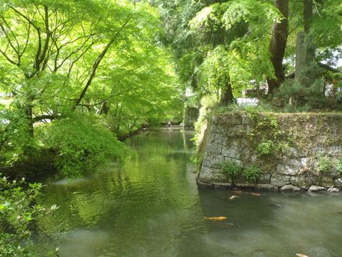 Matsudaira-go, Aichi
