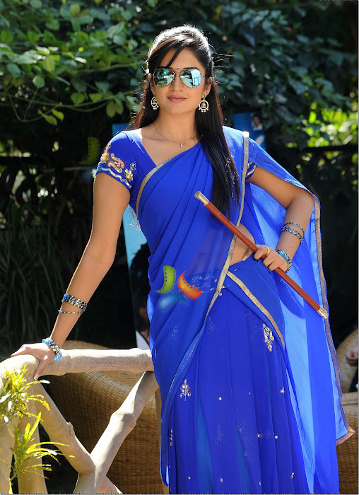 vimalaraman saree hq nowatermark hot images