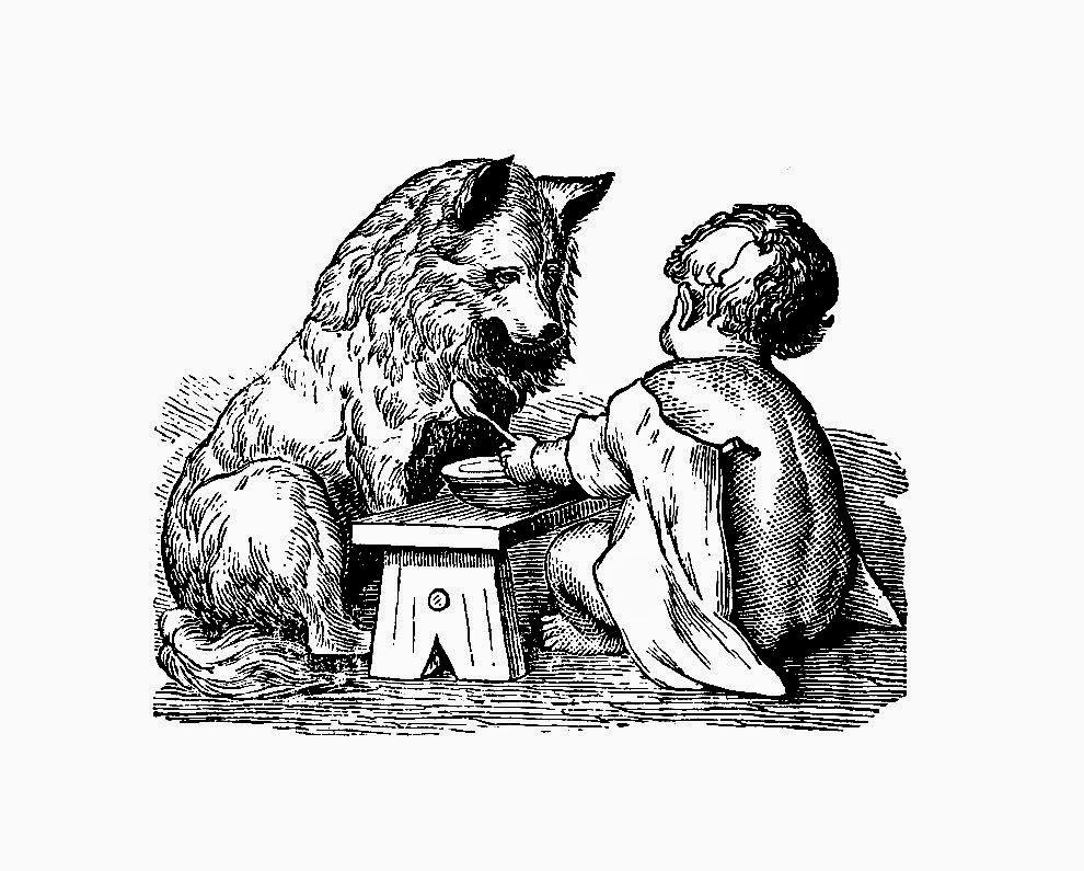 http://3.bp.blogspot.com/-oDfksm2XDWs/U5N8ulzF70I/AAAAAAAAUQE/WyjXRLM046o/s1600/baby_wolf_eating.jpg