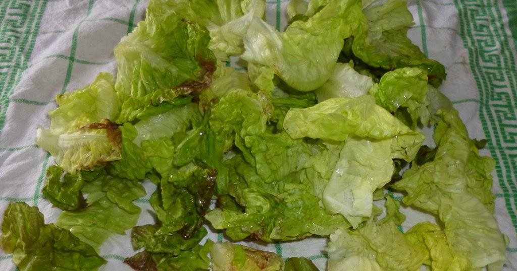 Je m 39 clate avec mes 10 doigts conserver la salade apr s l 39 avoir lav e - Comment conserver la salade ...