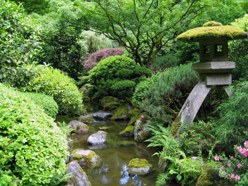 mini jardim oriental:Japanese Garden Design Ideas