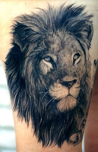 See more Realistic lion tattoos on arm